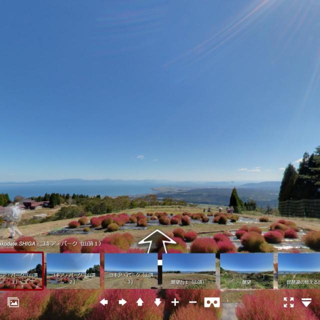 箱館山のコキア(紅葉)360度パノラマツアー
